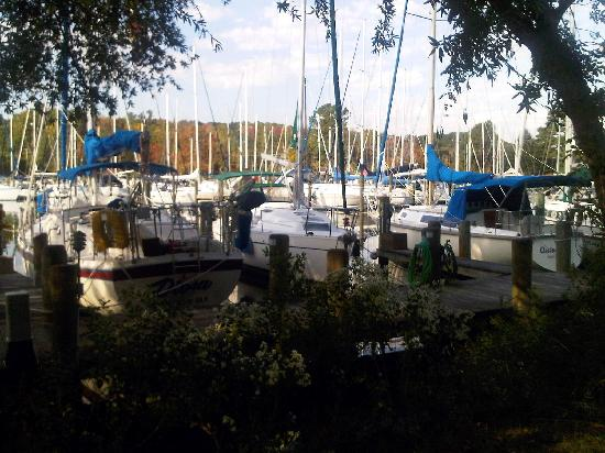 The Inn at Herrington Harbour: Yachts galore!