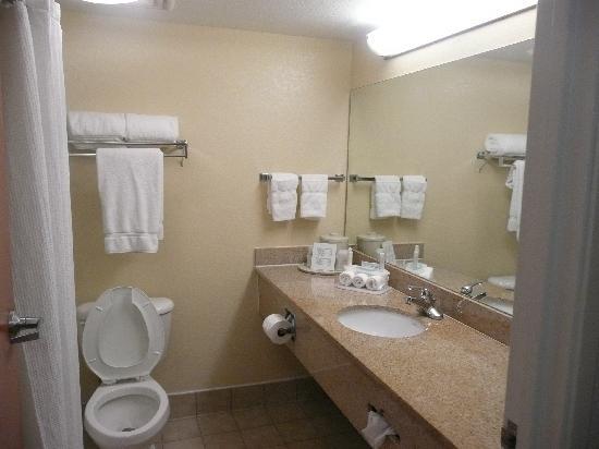 Comfort Inn & Suites Airport - American Way : Bathroom