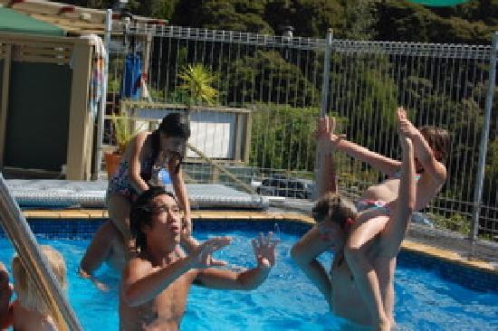 Bay of Islands Sublime Apartments: Fun for everyone