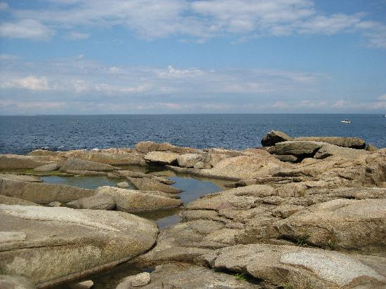 Cape Ann, MA: Halibut Point Park