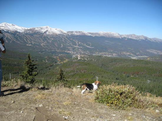 Breckenridge, CO: View from Mountain across from town.