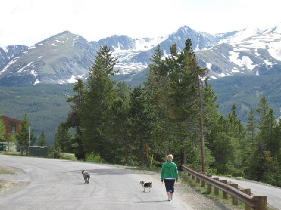 Breckenridge, CO: We usually take our pups