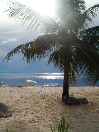 Malapascua Island, Philippines: A typical day in Malapascua as seen from Evolution's beachfront.