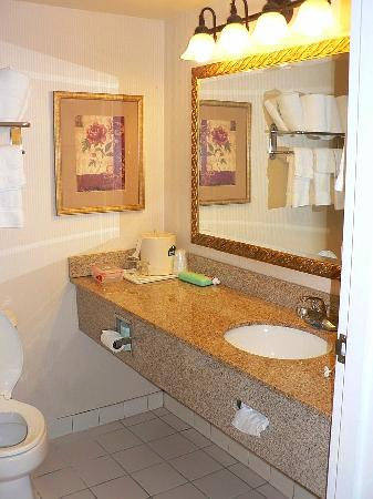 Wingate by Wyndham Chattanooga: Bathroom