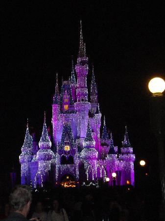 Castle lit up at Christmas time - Picture of Magic Kingdom Park ...