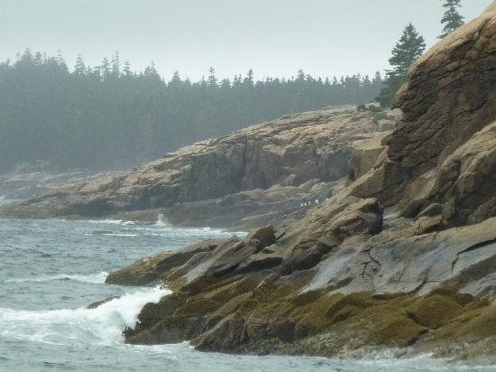 Acadia National Park, ME: Rocky Coast