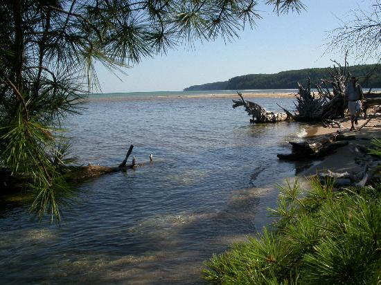 Falling Rock Cafe & Book Store: Sand Point