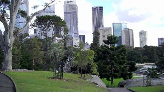 View of Sydney from Botanical Gardens