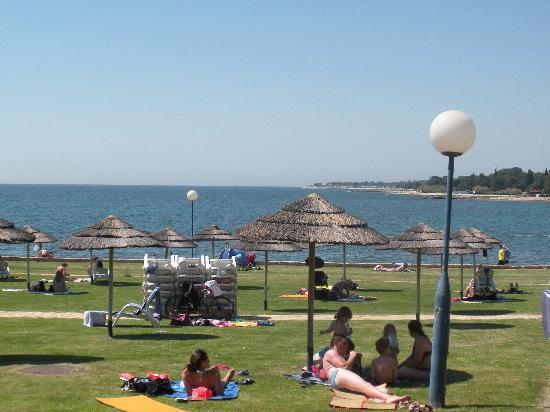 Valamar Pinia Hotel: Liegewiese zum Meer