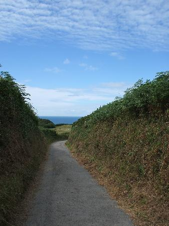 North Morte Farm Caravan & Camping Park: pathway at side of site - walk to lighthouse