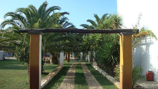 Pegasus Estate: The beautiful garden