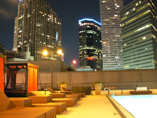 Sheraton Dallas Hotel: swimming pool