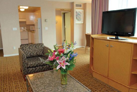 ذا لانديس هوتل آند سويتس: Executive Suite Living Room
