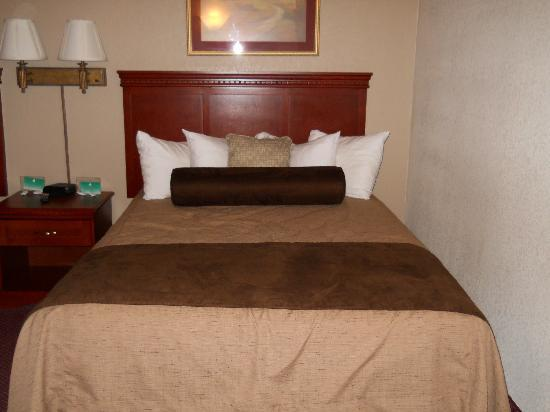 "BEST WESTERN PLUS Mill Creek Inn: ""Asian"" style bed"