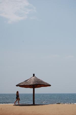 Ngala Beach Lodge : Relaxing beach
