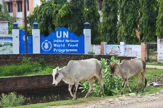 Kosi Zone, Nepal: UN office