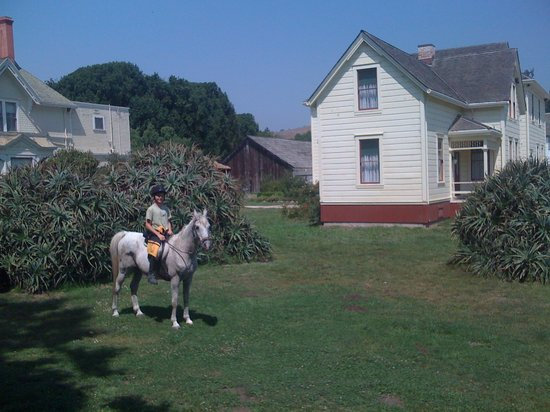 Santa Cruz, Californie : Wilder Ranch visit on horseback.