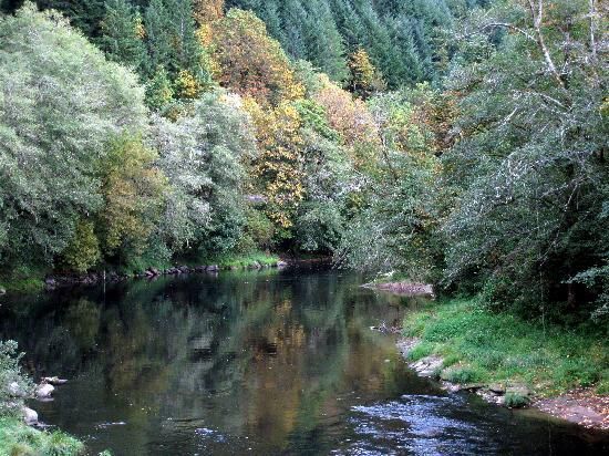 The Alsea Highway Oregon 2019 All You Need To Know