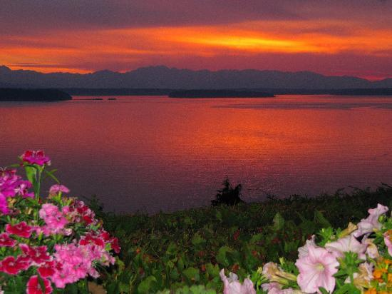 Eagle's View Bed and Breakfast, LLC: The sunsets never get old