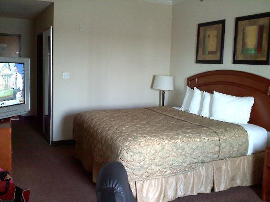 BEST WESTERN Cleveland Inn & Suites : Kingsize Room