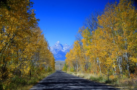 Джексон, Вайоминг:                                                                         Grand Teton seen through