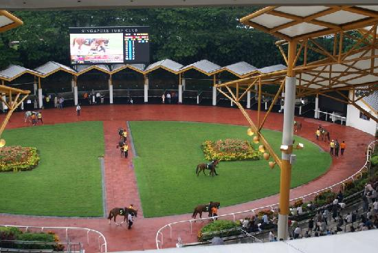 Singapore Turf Club: Zureitplatz