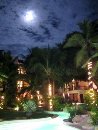 La Tortuga Hotel & Spa: La Tortuga Hotel swimming pool at night