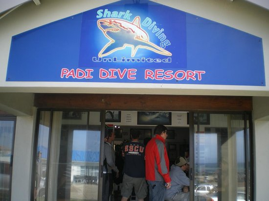 Shark Diving Unlimited: The venue for a fantastic experience