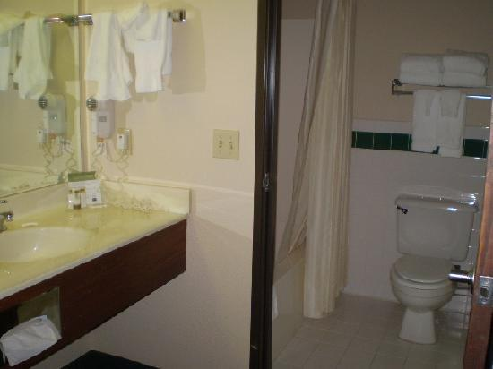 AmericInn Traverse City: Bath and vanity area