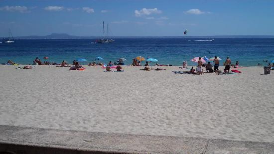 Hotel Tropico Playa: beach just across the road from hotel tropico