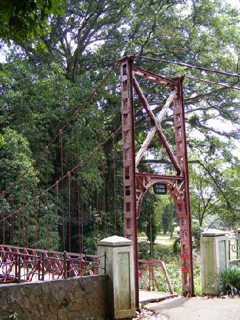The red bridge, Bogor