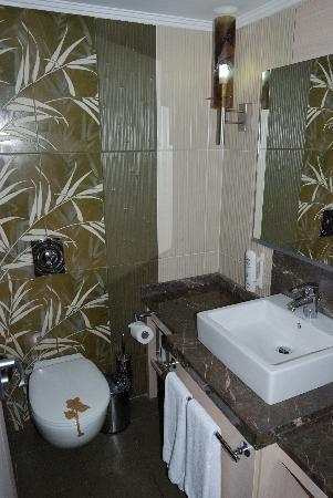 Ambassador Plaza Hotel : Badezimmer