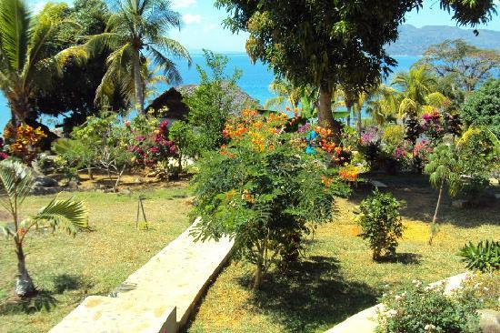 Nosy Komba, Madagascar: jardin
