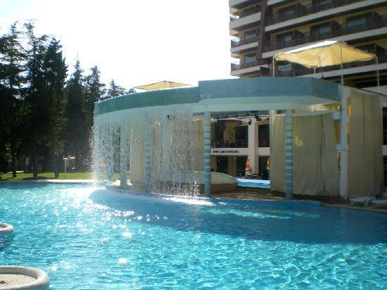 Flamingo Grand : Swimming Pool
