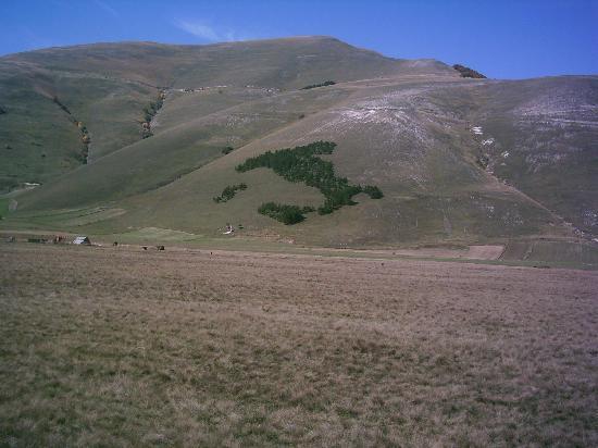 Norcia, Italy: il boschetto dll'Italia sulla montagna