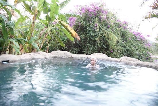 Gecko Lodge: Zwembad
