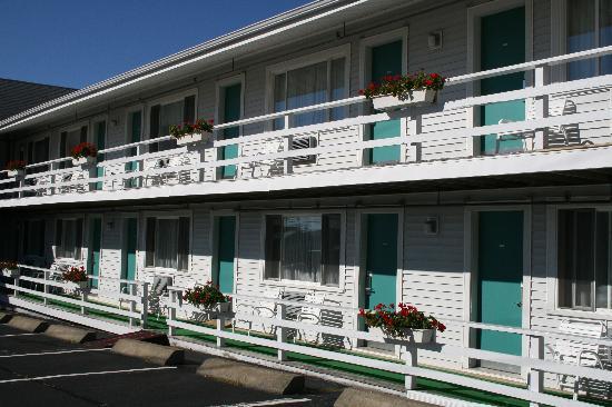 Rocktide Inn: Blick auf die Räume