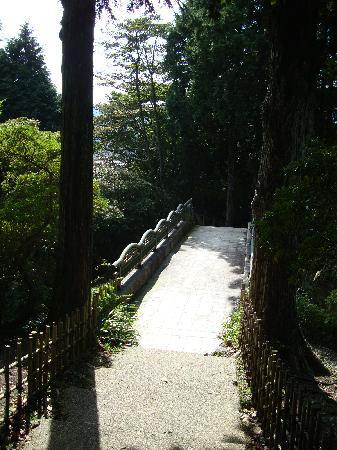 Hakone-machi, Japon : Park at Hakone