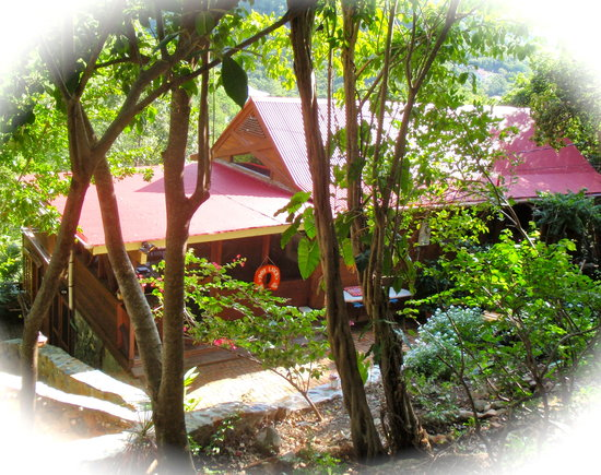 """Treetops"" is located in Fish Bay, a short drive from the ferry dock."