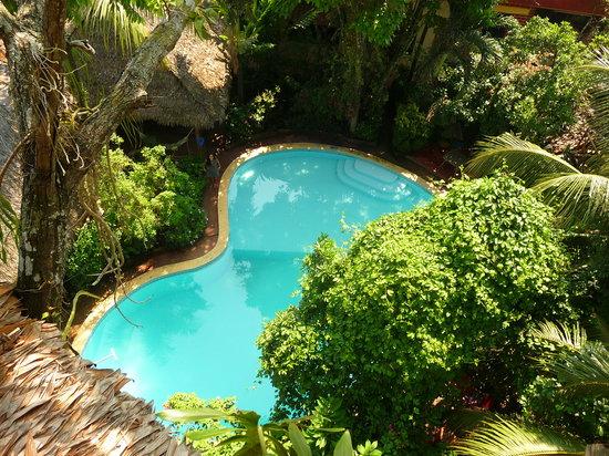 La Casa Fitzcarraldo: Pool