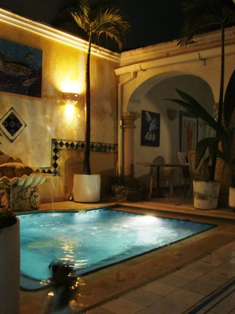 Casa de la Chicheria: Our Pool