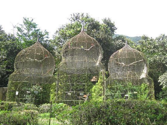 El Valle de Anton, Panama/Panamá: Zoologico Nispero 02