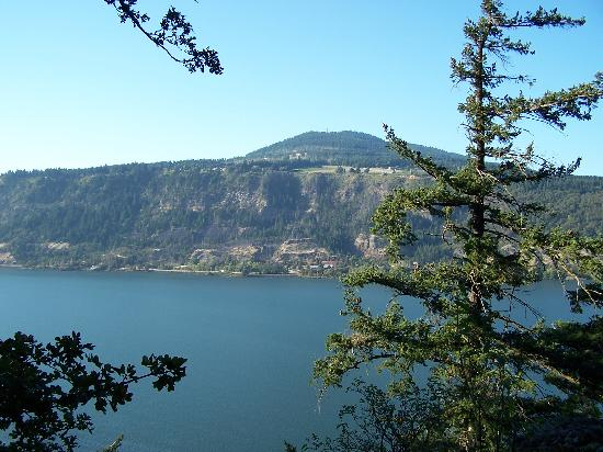 Lakecliff Bed and Breakfast: Columbia River Gorge from the back lawn