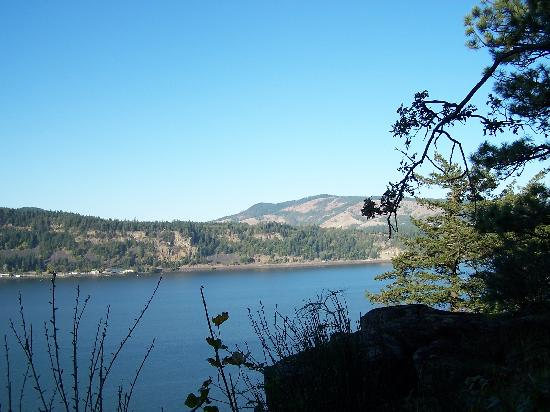 Lakecliff Bed and Breakfast: Columbia River from the lawn at Lakecliff