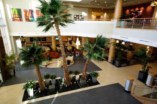 Embassy Suites by Hilton Houston - Energy Corridor照片