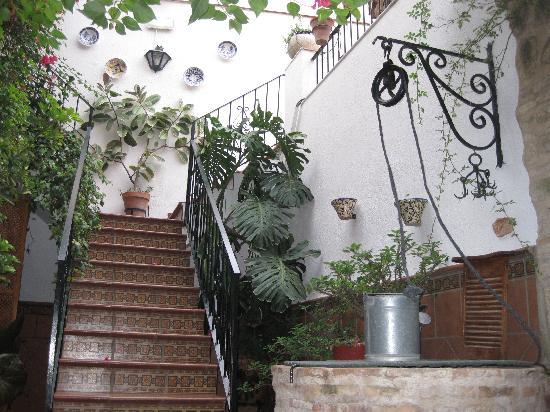 Apartments Embrujo de Azahar : Subida a terraza
