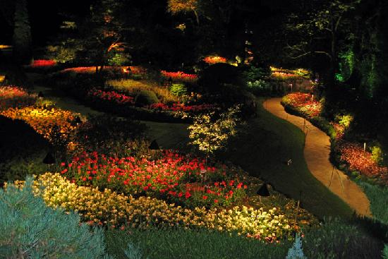 Central Saanich, Καναδάς: The Sunken Garden at night