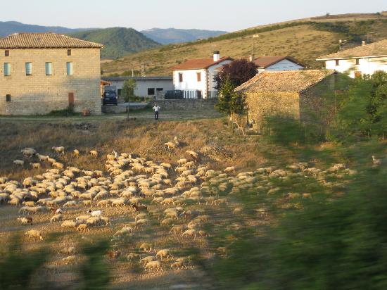 Eparoz, Spagna: Rush hour on the return home