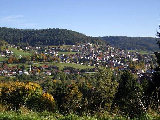 Hotel Rose : Blick auf Baiersbronn