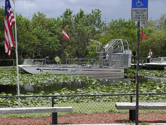 Sea Woods: Everglades